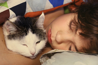 Child sleeping with Cat Ringworm